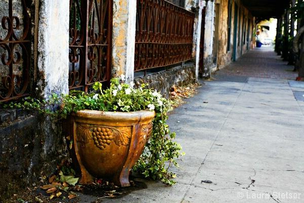 Sonoma Sidewalk