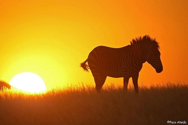 Namibia sunset.