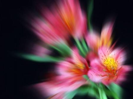 Bursting Color