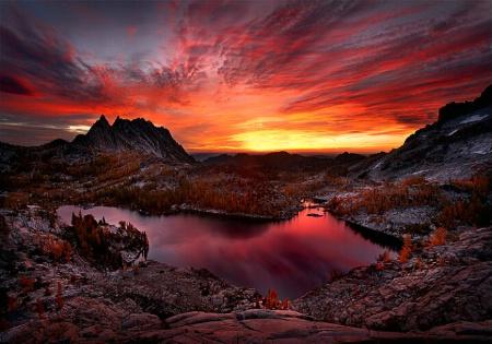 Enchanted Sky Fire