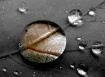 Anatomy of a Drop...