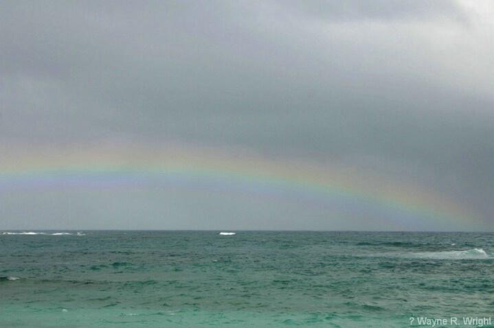 Rainbow  - ID: 4772808 © Wayne R. Wright