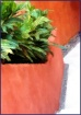 Mexico Planter