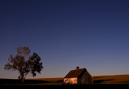 Prairie Shadows