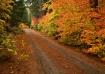 Hatchery Road