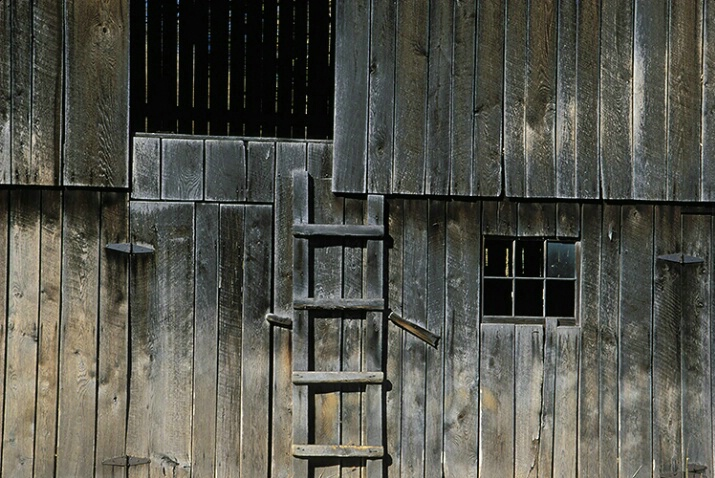 Barn Ladder - ID: 4877604 © Averie C. Giles