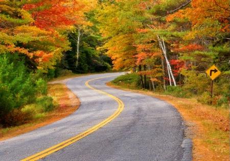 Winding Through Autumn