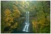 Misty Waterfalls-...