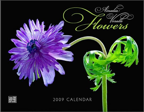 2009 CALENDAR - COVER