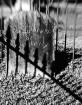 Headstone Shadows