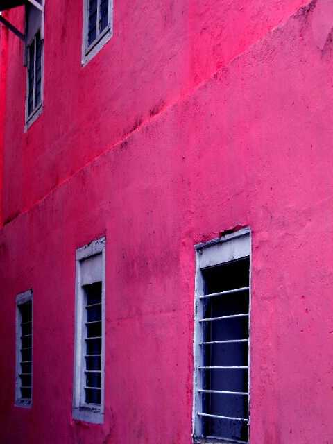 Pink'ish Wall with Windows