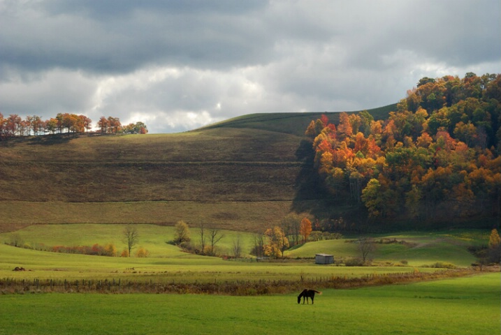 West Virginia Fall
