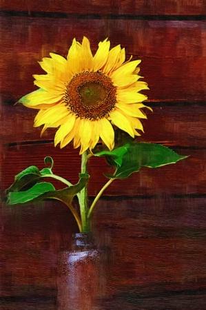 Painted Sunflower