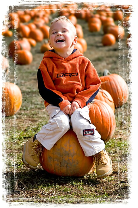 <b>Pumpkin Smiles</b>