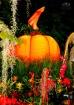 Halloween Saturat...