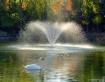 Fall on Swan Lake