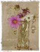 flowers with bott...