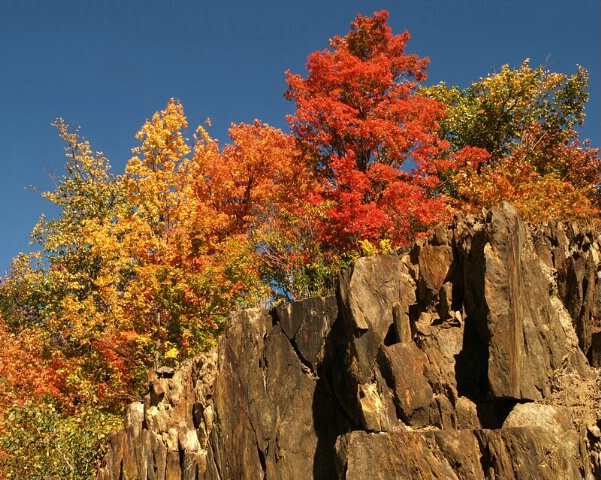Autumn on the Rocks