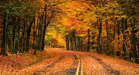 Fall Blanket