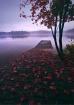 Lake after Rain
