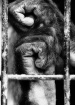 caged souls #2