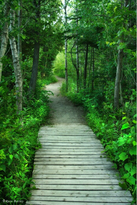 This Path We've Chosen Isn't Straight.