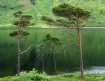 Lochside Monarchs
