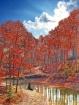 Cherry Red Pond A...