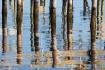 Mobile Bay Reflec...