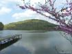 Morgan's Cove...