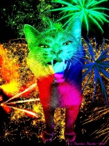 Disco Kitty Shouts Out.....HAPPY MEW YEAR