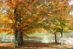 fall at Watkins M...