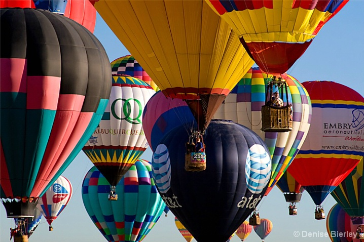 Balloons Aloft - ID: 5423539 © Denise Bierley