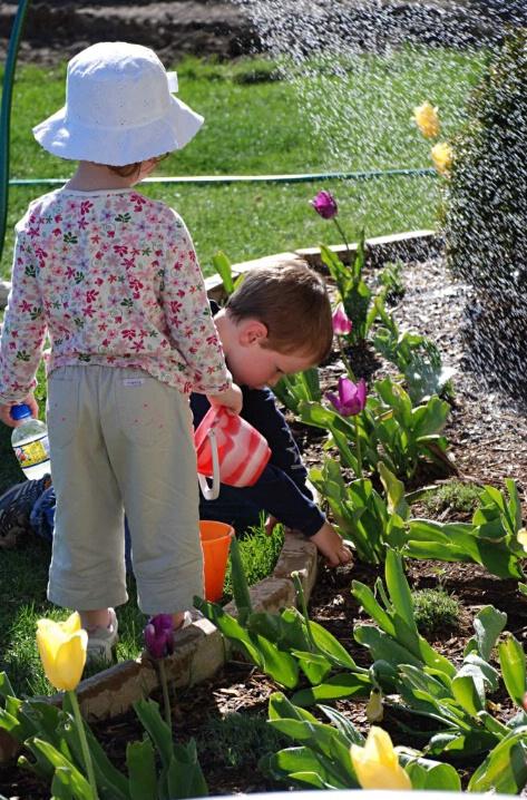 Gardening (P)