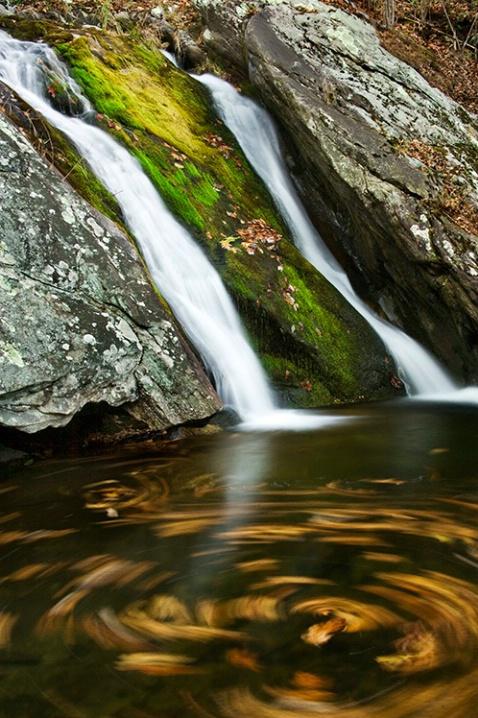 swimming leaves, Burnsville Falls - ID: 5463390 © Bob l. Peterson