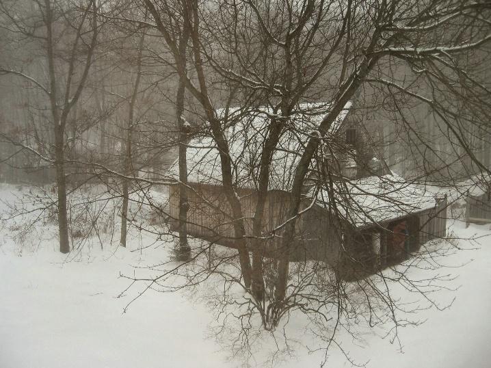 January Barn