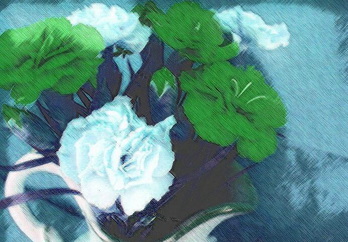 strange carnations
