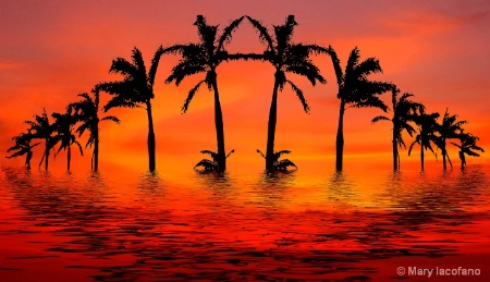 Tropical Flood in Red