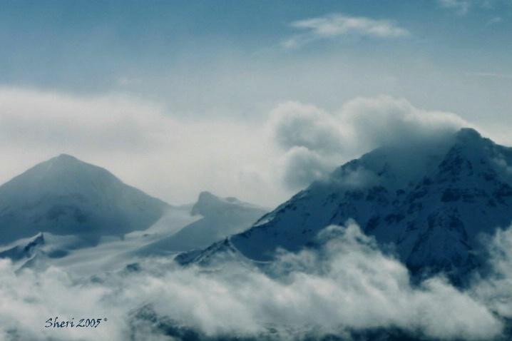 Blue Mist - ID: 5579466 © Sheri Camarda