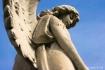 An Angel's Vi...