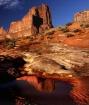 Desert Reflection...