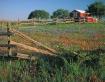 Llano Barn