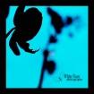 Moth Orchid ~*5*~...
