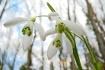 Spring has arrive...