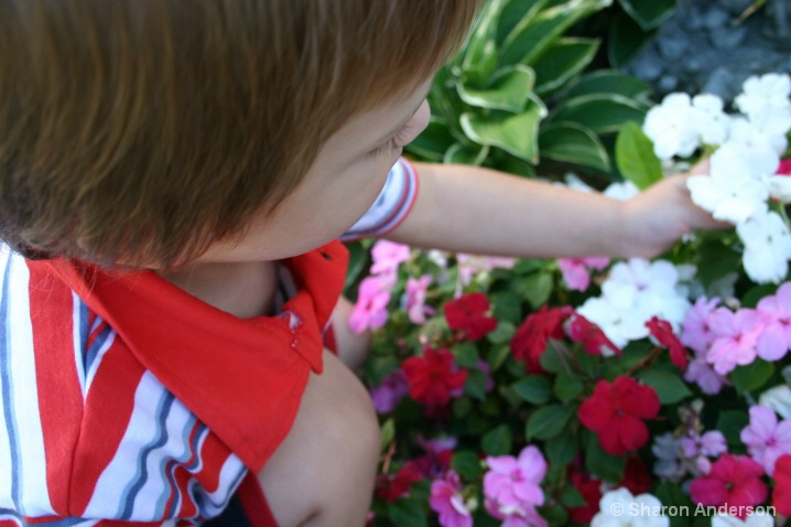Picking Flowers for Mom
