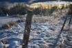 Winter's Sple...