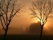Mystical Foggy Mo...