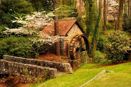 Cherry Blossom Mill