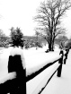 Winter's Clin...