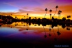 Lagoon Reflection...
